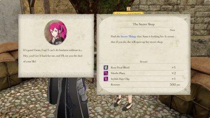 Anna's Shop Sidequest