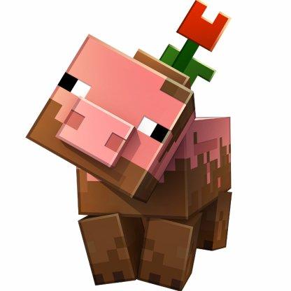 Cochon boueux