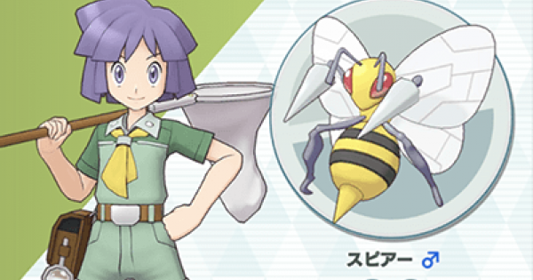 Masters Pokémon | Bugsy & Beedrill – Sync Pair Statistiques et mouvements