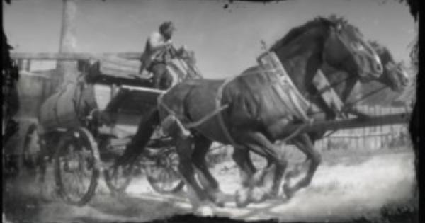 RDR2 | Verser de l'huile II – Procédure pas à pas | Red Dead Redemption 2
