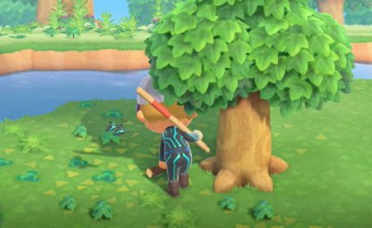 Ramasser des branches d'arbres