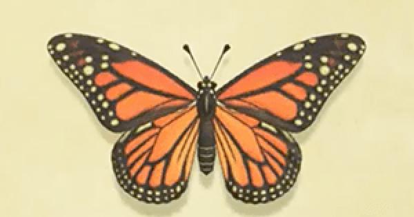 Animal Crossing New Horizons | Papillon monarque – Comment attraper & prix | Interrupteur de passage d'animaux