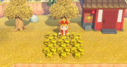 Roses dorées
