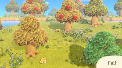 Changements de couleur des arbres et de l'herbe