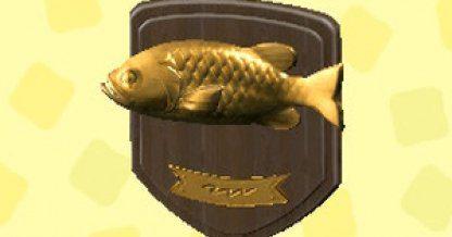 Plaque de poisson