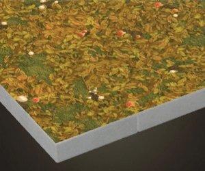 Plancher de champignon