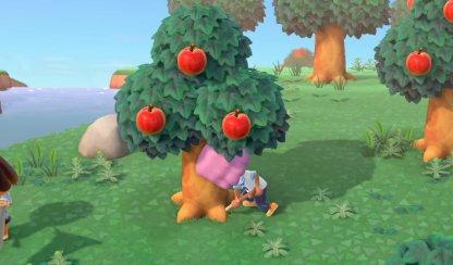 Creusez des arbres directement