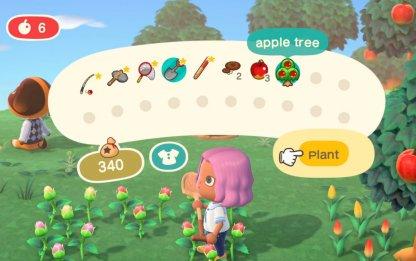 Replanter facilement les arbres creusés