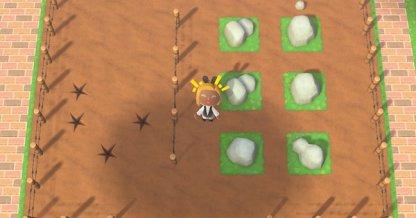 Jardin de roches