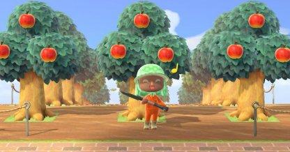 Verger fruitier