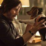Les réalisateurs de John Wick ont eu du mal à garder la scène de la mort des chiens