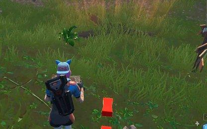 Marque l'emplacement du butin caché dans l'île