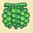 Raisins de mer