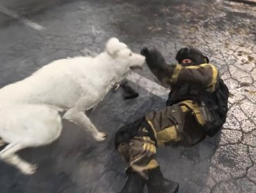 【Warzone】 Comment obtenir Dog & Hyena (Finishing Moves) 【Call of Duty Modern Warfare】 – JeuxPourTous