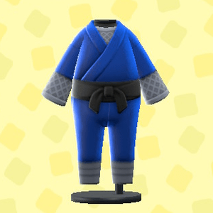 Costume Ninja
