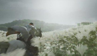 Les chevaux ne meurent pas