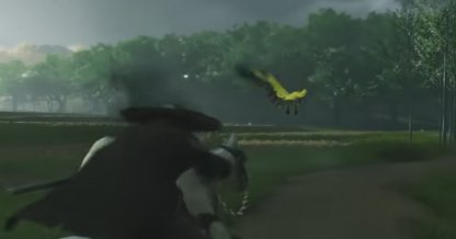 Suivez les oiseaux jaunes